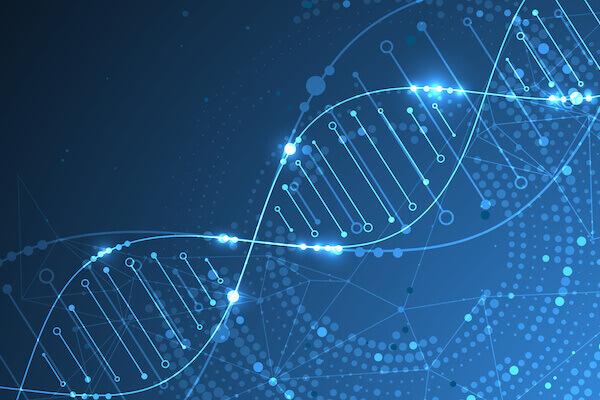 遺伝子(ゲノム)